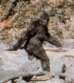 Bigfoot? Or just a guy in a suit?