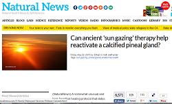 Natural News Sun Staring