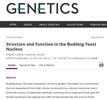 Plagiarism in Genetics Journal